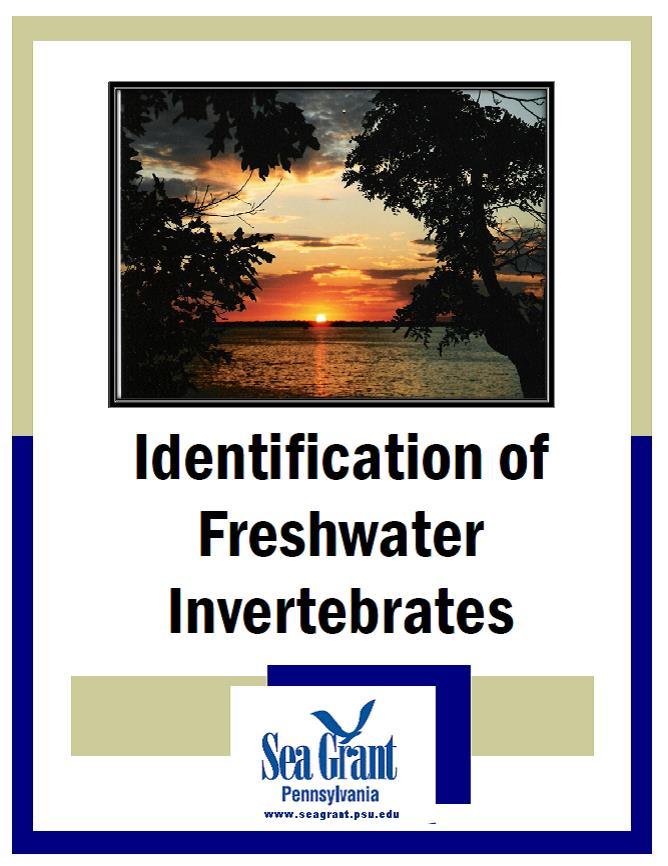 Identification of freshwater invertebrates cover